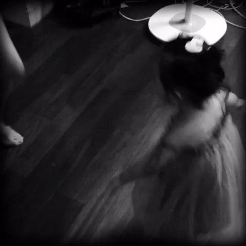 dancinggirl吉他谱