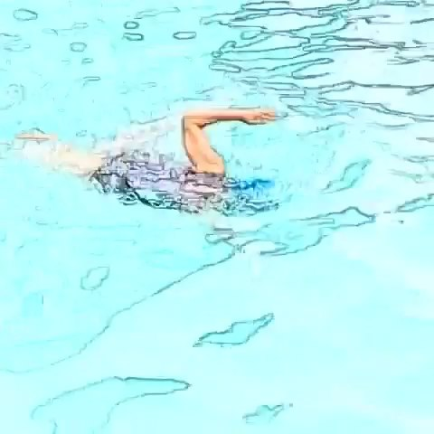 自由泳 图片