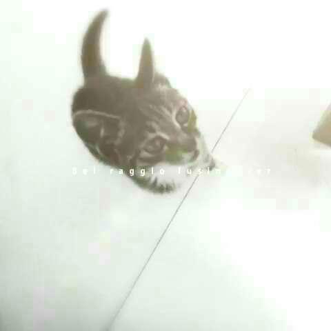 哈罗kitty猫矢量