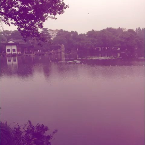 旅行#青城山下白素贞.素素.