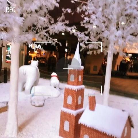 下雪了图片