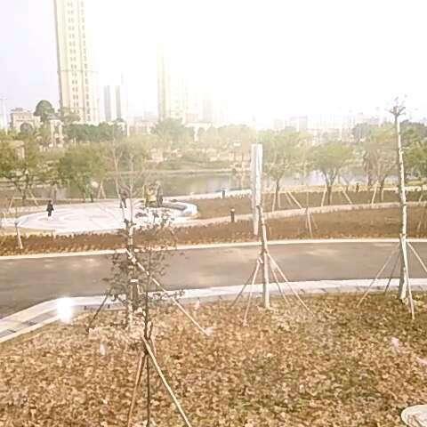 安阳飞豹电动车电路图