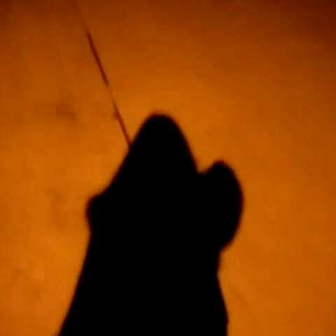 夜灯下,落寞的影子