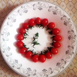 调皮的小柿子
