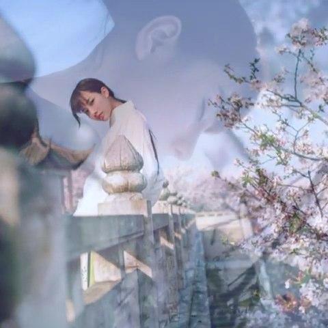 """被岁月覆盖的花,落满地。 - AG-夏葵的美拍"""""""