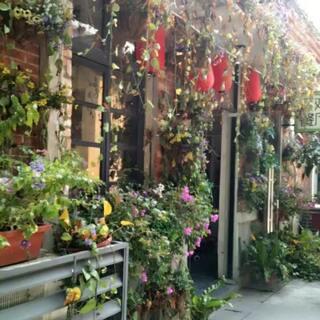 #你的家乡是哪呢#廣州—圖片來自廣州紅磚場