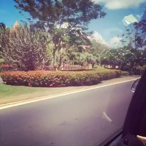 一路风景太美丽