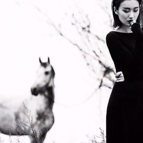 """#吕颖的颖私#早安照片电影-以梦为马。原图分享在"""""""