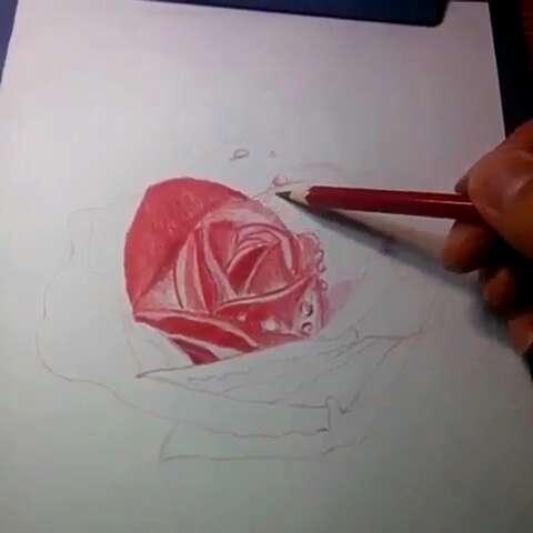 彩铅手绘#红玫瑰,最爱eason的这首歌