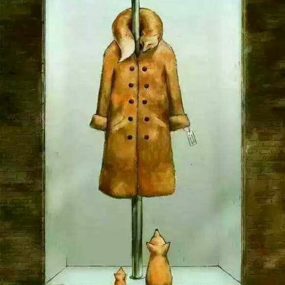 动物保护公益广告传图片