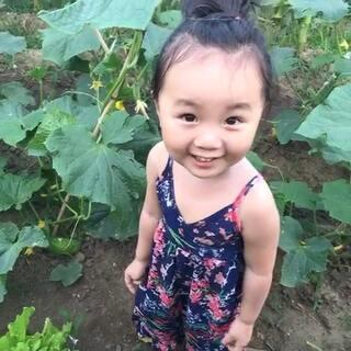 东北话可爱小妞