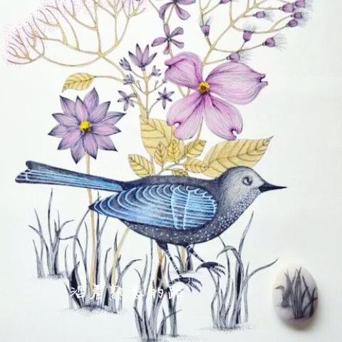 15-06-29 #晚安##照片电影#手绘彩铅画.我的毕业设计:花鸟装饰画.
