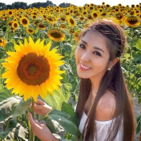 """#旅行#向日葵、薰衣草花海!! 很喜歡漂亮的大自然"""""""