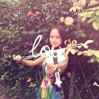 花丛中的小提琴