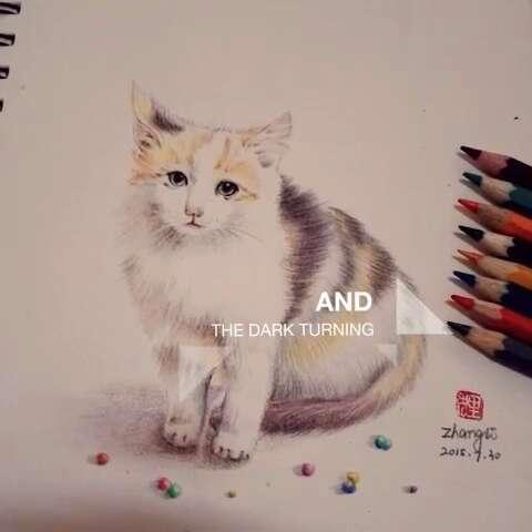 手绘彩铅画##宠物猫咪##彩铅画画##我爱画画