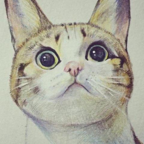 手绘猫咪#绘画##手绘彩铅画##萌宠##猫咪##搞笑# - 小