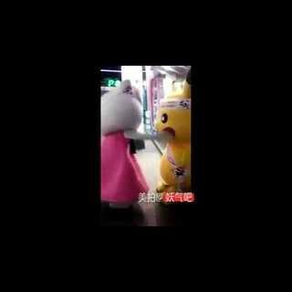 皮卡丘 VS kitty猫!实拍史上最萌宠大战!被皮卡丘的小短手和撞墙动作给萌翻了!😂😂😂#皮卡丘##逗比##搞笑##热门#@美拍小助手