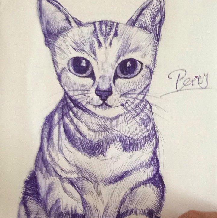 画猫 圆珠笔