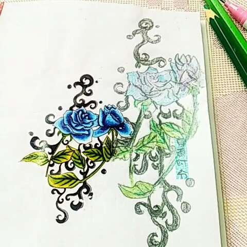 手绘~玫瑰#60秒美拍##手绘彩铅画