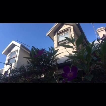 #旅行##澳洲##东海岸##自驾游#2015年8月8日Sydney-Port Stephens