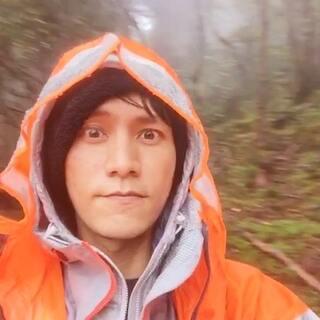 8小时的徒步到了4200米的森林里,中雨,树香,我们在#2015行走的力量##香格里拉😝😝😝#