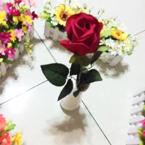 是真的玫瑰花吗