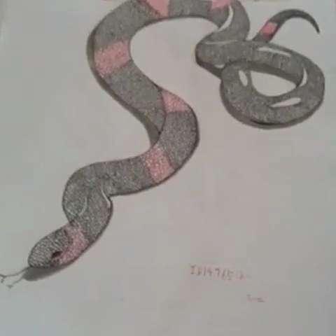 神奇3d手绘蛇