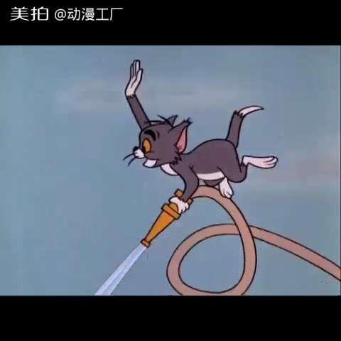 猫和老鼠-船上的猫5#猫和老鼠##我要上热门##搞笑##动画片##经典动画图片