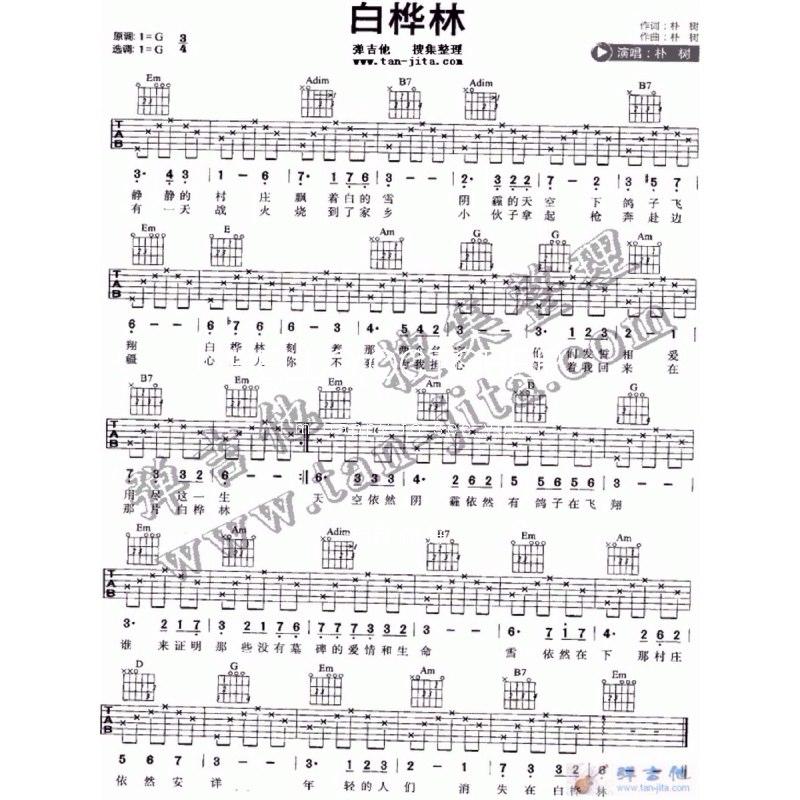 白桦林古筝曲谱