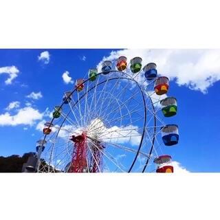 只是悉尼的高空缆车#看完只想去旅行#。白天在悉尼的月亮公园坐上缆车悉尼桥、歌剧院、无敌海景尽收眼底。晚上呢?自己来体验吧✌️✌。登上悉尼情人港的缆车是有烟花看的呦👍👍。要不是晕高我就上去拍了😂😂@美拍小助手 #旅行#。歌Say You Say Me - Lionel Richie.