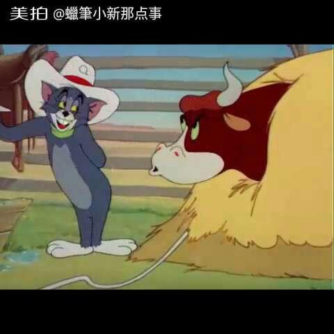 猫和老鼠-西部牛仔05#猫和老鼠##我要上热门##搞笑##动画片##经典动画图片