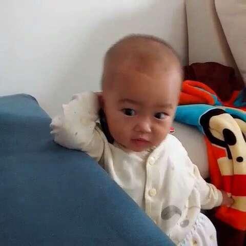 宝宝 壁纸 动物 狗 狗狗 孩子 小孩 婴儿 480_480