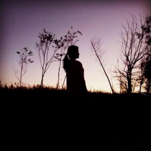 月上树梢头 人约黄昏后