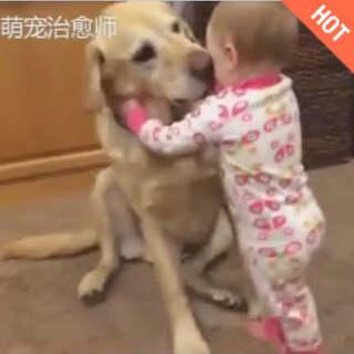 狗狗与宝宝的趣事