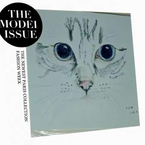 手绘彩铅#猫,永远的冰山美人,即使你将它搂入怀中,也