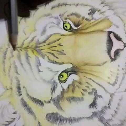 手绘彩铅画##动物##手绘作品##手绘动物动画#爸爸问