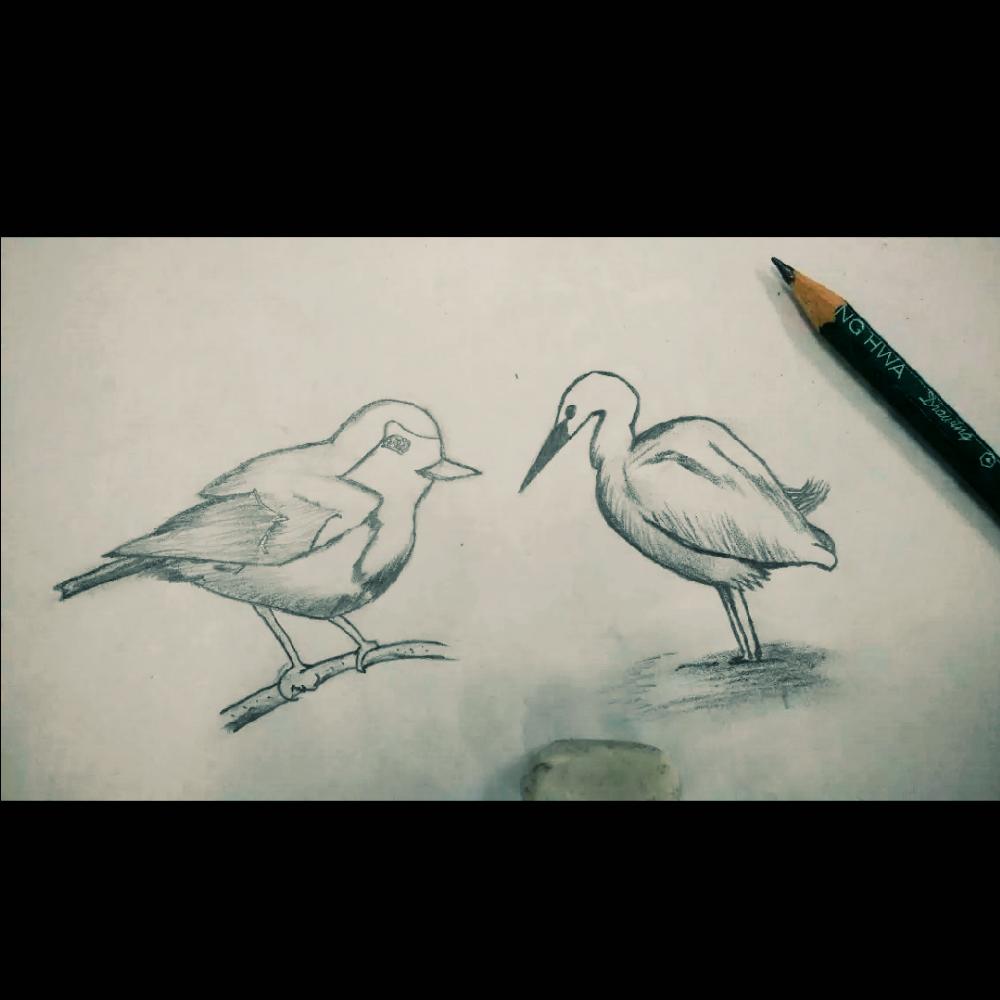 随手美拍##手绘铅笔画##铅笔画##手绘动物##画画##随手画画