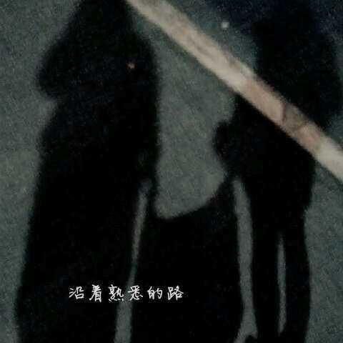 动物黑马影子图