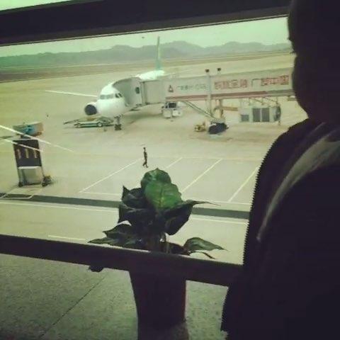 昨天的视频 揭阳到上海的飞机 不知道你爸爸忙忙忙着连过来看都不看一