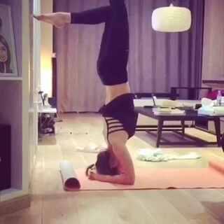 前臂倒立还没有准备好 😞#瑜伽##每日瑜伽##倒立##头倒立##瑜伽倒立#