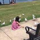 别的小朋友一般都喜欢小猫小狗之类,糖总最爱的却是鸟类🐧🐦🐤,喂🐦是她一大爱好☺#宝宝##随手美拍##糖小希#