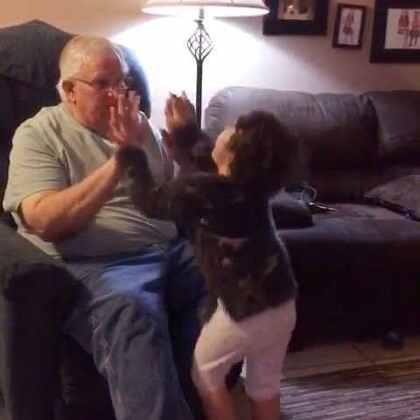 #momo和grandpa# 上一次的库存,爷爷真的太可爱了,我跟奶奶在旁边已经笑得不行了。不好意思又让大家听到我的笑声了😂😂😂