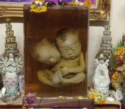 【探险泰国:双头婴神庙】我去过不少神庙,供奉双头婴的倒是第一次见,带你去看看里面都有啥……#冒险雷探长##旅行##旅游#