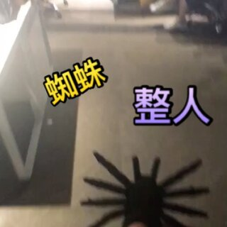 蜘蛛和蟑螂你怕哪一个?反正我想起那天早晨被巴掌大的蜘蛛支配的恐惧。@阿盐小哥哥 #有蟑螂##热门#