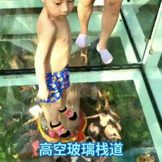 #宝宝#高空#玻璃栈道##勇敢的宝宝#加油,我的儿