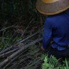 在农村其实这样都是日常,每天都是劳动的一天#遇见最美劳动者#@美拍小助手
