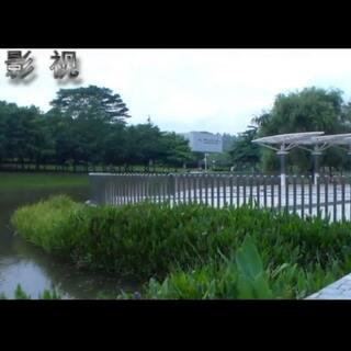 小型纪录片《今朝坪山》生态篇(下)#纪录片##5分钟美拍#