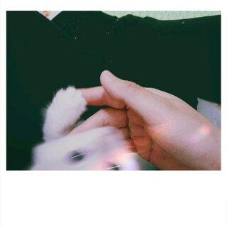 #like & love##宠物##猫咪成长记#