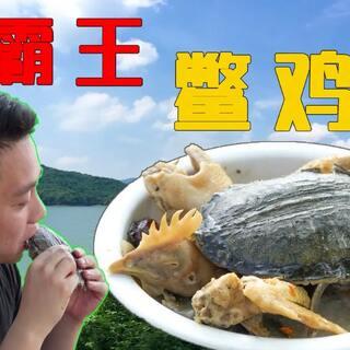 【霸王鳖鸡】老母鸡炖甲鱼,清...